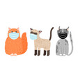 cats in protective masks vector image