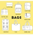 Different kinds of bags and purses vector image vector image