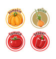 four stickers with different vegetables pumpkin vector image