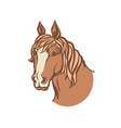 horse head color red horse vector image