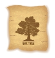 Oak Tree on Old Paper vector image vector image