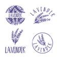 set template logo design abstract icon vector image vector image