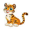 sitting cute tiger cartoon character vector image