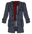 the funny gray coat vector image vector image