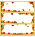 Autumn banners with maple leaves background vector image vector image
