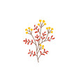 autumn plant branch with ripe yellow berries and vector image vector image