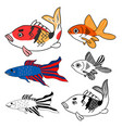 carp goldfish siamese fighting fish set vector image vector image