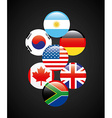 flags of countries vector image vector image