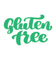 gluten free hand drawn lettering phrase isolated vector image vector image