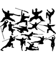 Kung fu silhouettes vector image vector image