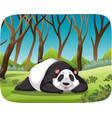 panda in forest scene vector image vector image