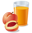 peach juice vector image vector image