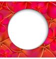 Pink Frangipani Shere vector image vector image
