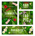 summer tropical banner with exotic floral frame vector image vector image