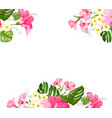 tropical flower garland for your card design vector image