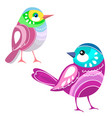 bird two colored birds isolated on white vector image