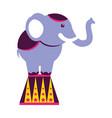circus fun fair vector image vector image