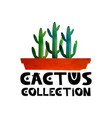 cute lettering text collection of cacti logo for vector image vector image