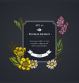 dark badge design with celandine chamomile vector image vector image