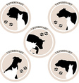 Dog and cat veterinary icons vector image vector image