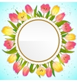Floral decorative card with red and yellow tulips vector image vector image
