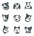fun dog icon vector image