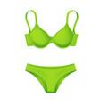 realistic green bra panties template mockup vector image
