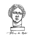 venus de milo head sculpture drawn in engraving vector image