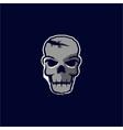vintage hand drawn skull logo design vector image
