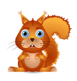 cute squirrel character vector image