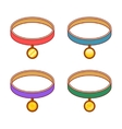 Colorful collars with different round gold tags vector image