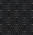 abstract geometric pattern with lines on dark vector image