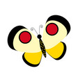 butterfly insect vector image