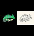 chameleon lizard american green iguana exotic vector image vector image