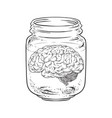 human brain in glass jar isolated vector image vector image