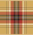 red blue tartan fabric texture seamless pattern vector image