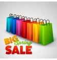 Big spring sale poster vector image