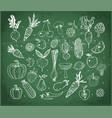 doodle fruits and vegetables on blackboard vector image vector image