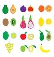 Fruits Big Set Flat Organic vector image vector image