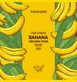 retro poster with of banana and place vector image vector image