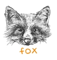sketch of fox vector image vector image