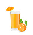 Orange Cool Cocktail vector image
