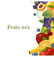 fruits border isolated on white background vector image vector image