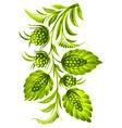green twig vector image vector image