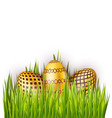 group of easter eggs with pattern isolated on vector image vector image