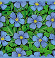 hand drawn flax flower seamless pattern vector image vector image
