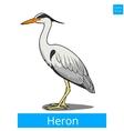 heron learn birds educational game vector image vector image