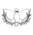 pigeon peace symbol front view with olive branch vector image vector image