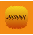 autumn for logotype flyer banner invitation vector image