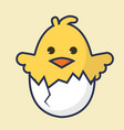 cute chick in egg vector image